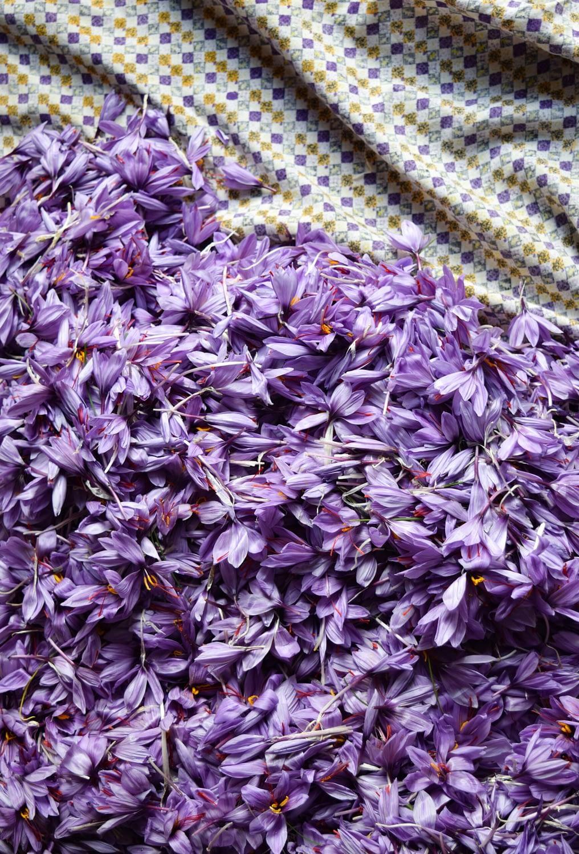 Picture saffron scaled